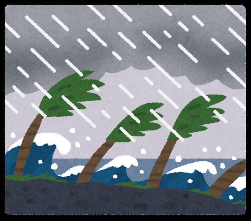 南国の台風